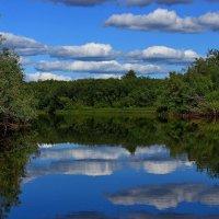 Речные зеркала. :: Galina S*