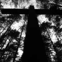 Cross :: Maggie Aidan