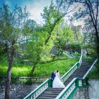 Wedding :: Мисак Каладжян