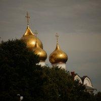 Золотые купола. :: Михаил MAN