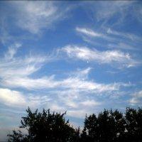 Летние облака :: Татьяна Пальчикова