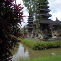 Бали :: Elena Elka