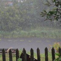 Дождь :: Olga Kovalski