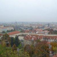 Туман над Прагой :: Ольга