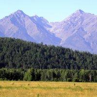 Степь,лиственные,хвойные леса горы(как в старом учебнике). :: Александр Попов