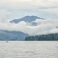 Дождливое утро на озере :: Галина Шепелева