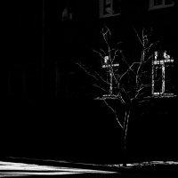 Пронзая тьму :: Аннушка Козельская