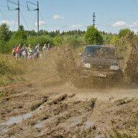 Патриот в грязи. :: Виктор Евстратов