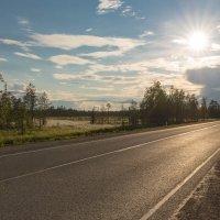 Мурманское шоссе :: Александр