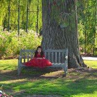 Принцесса в красном :: Николай Танаев