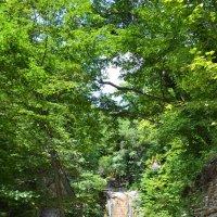 дорожка к водопаду :: Светлана