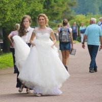 Свадебная свита... :: Tatiana Markova