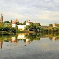 Вид на Новодевичий монастірь :: Олег