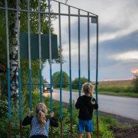 Заржавели петли на воротах... :: Ирина Данилова