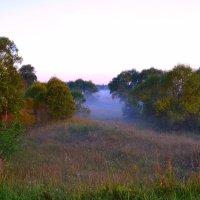 ... утро.... туман... :: Victor