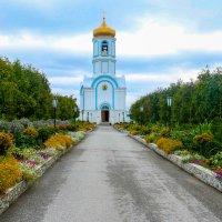Путь. :: Иван Янковский