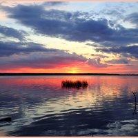 закат на озере,август :: Геннадий Ячменев