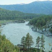 река Катунь. Алтай. :: Михаил Фролов