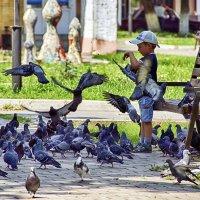 Мальчик и голуби :: Alex Sash