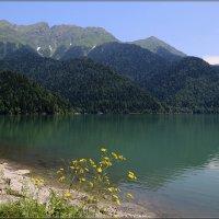 Озеро Рица :: Ирэн