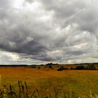 бескрайние поля :: Евгения Копейкина