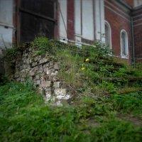 у кладбищенской заброшенной церкви :: alecs tyalin