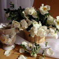 Быстротечен цвет шиповника :: Светлана Жив-ая