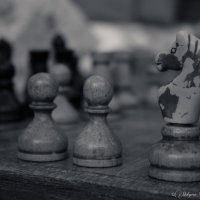шахматы :: юрий мотырев