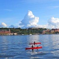 лето в Швеции :: Елена