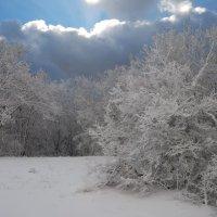 Крымские горы, зима :: Serge