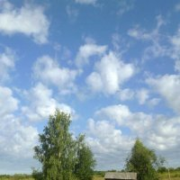 Августовский денёк. :: Николай Туркин