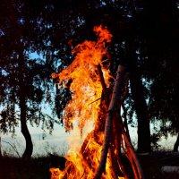 Вспыхнет пламя :: Alina Serbskay