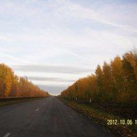 Эх дороги..... :: Наталья Бутырская