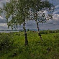 Август на Иртяше :: Сергей Адигамов