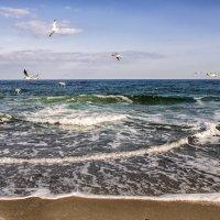 Море :: ALLA Melnik