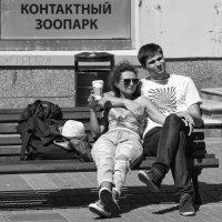 Есть контакт! :: Александр Степовой