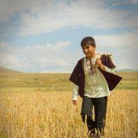 маленький поможник :: Armen Mkhoyan