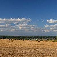 Приокские поля :: NICKIII Михаил Г.