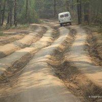 ольхонскими дорогами :: василиса косовская