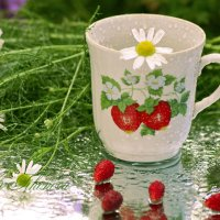 Чай ромашковый в дождливую погоду :: galina tihonova