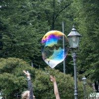 мыльный пузырь :: ник. петрович земцов
