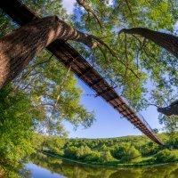 Пешеходный мост через р.Дон :: Roman Rez