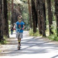 Sunday in the Park :: Dmitry Ozersky