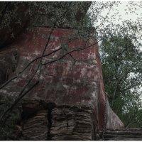 в горах :: Ирина Чуднова