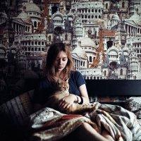 кошачья Европа :: Полина Захарова
