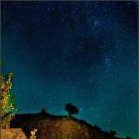 Звездное небо над Запорожьем :: Андрей Черненко