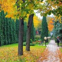 скоро осень........ :: Елена Лабанова