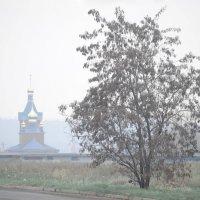 Туман :: Олег Боголюбов