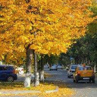 осень в Ессентуках.... :: Елена Лабанова