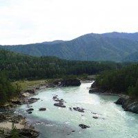 Слияние рек Чемала и Катуни :: Виктор Буянов